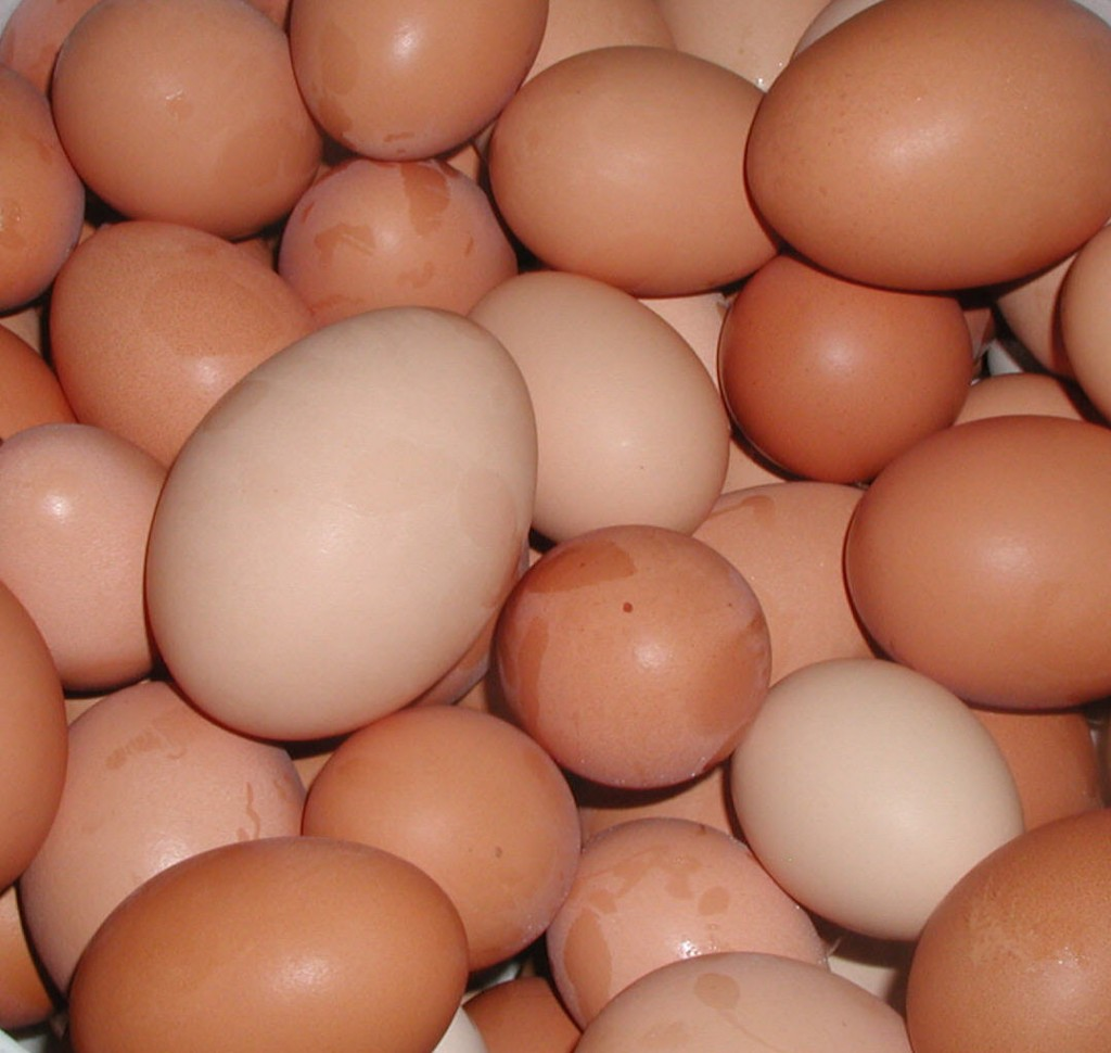 La dieta dell'uovo thumbnail