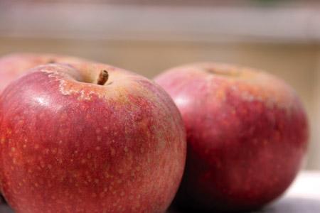 Festa della mela, dal 23 al 25 ottobre 2015 a Valle di Maddaloni (Ce) thumbnail